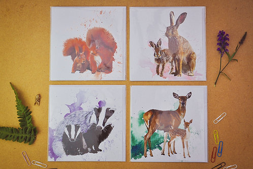 Wildlife 8 - SALE Pack of 4