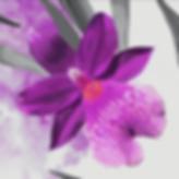 Screenshot 2020-06-08 at 18.22.26.png