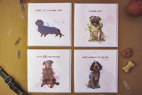 Paws 7 - SALE Pack of 4