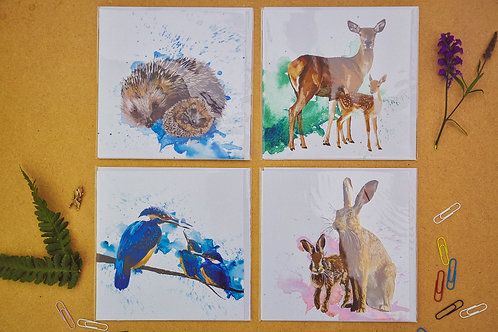 Wildlife 2 - SALE Pack of 4