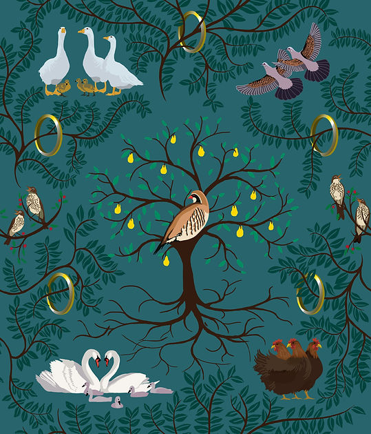 12 Days of Christmas Bird repeat pattern design