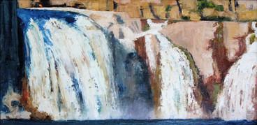 """""""Shoshone Falls Study"""""""