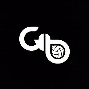Volleyball Logo with Black.jpg