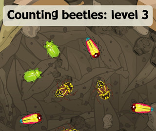 Counting beetles Level 3