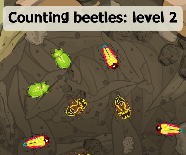 Counting beetles Level 2