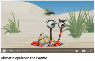 Climatic cycles in the Pacific
