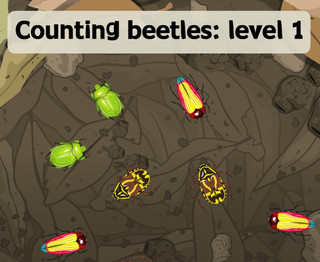 Counting beetles Level 1
