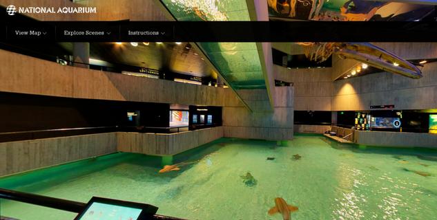 National Aquarium tour