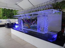 Ice bar With Logo to Centre