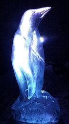 Penguin Vodka Luge