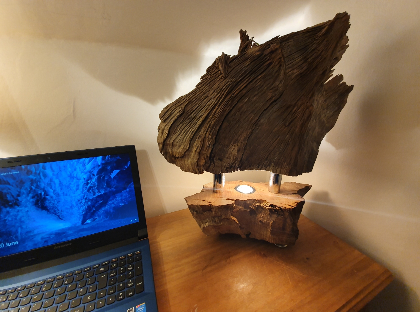 Tree Root LED lamp