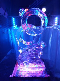 Entwined Rings Wedding Ice Sculpture/Luge