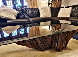 Oak Tree Root Coffee Table