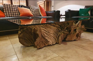 Our first oak root coffee table with 10mm glass which sold to a coupke in Surrey.