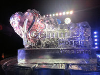 St Gemmas Hospice Logo Ice Sculpture