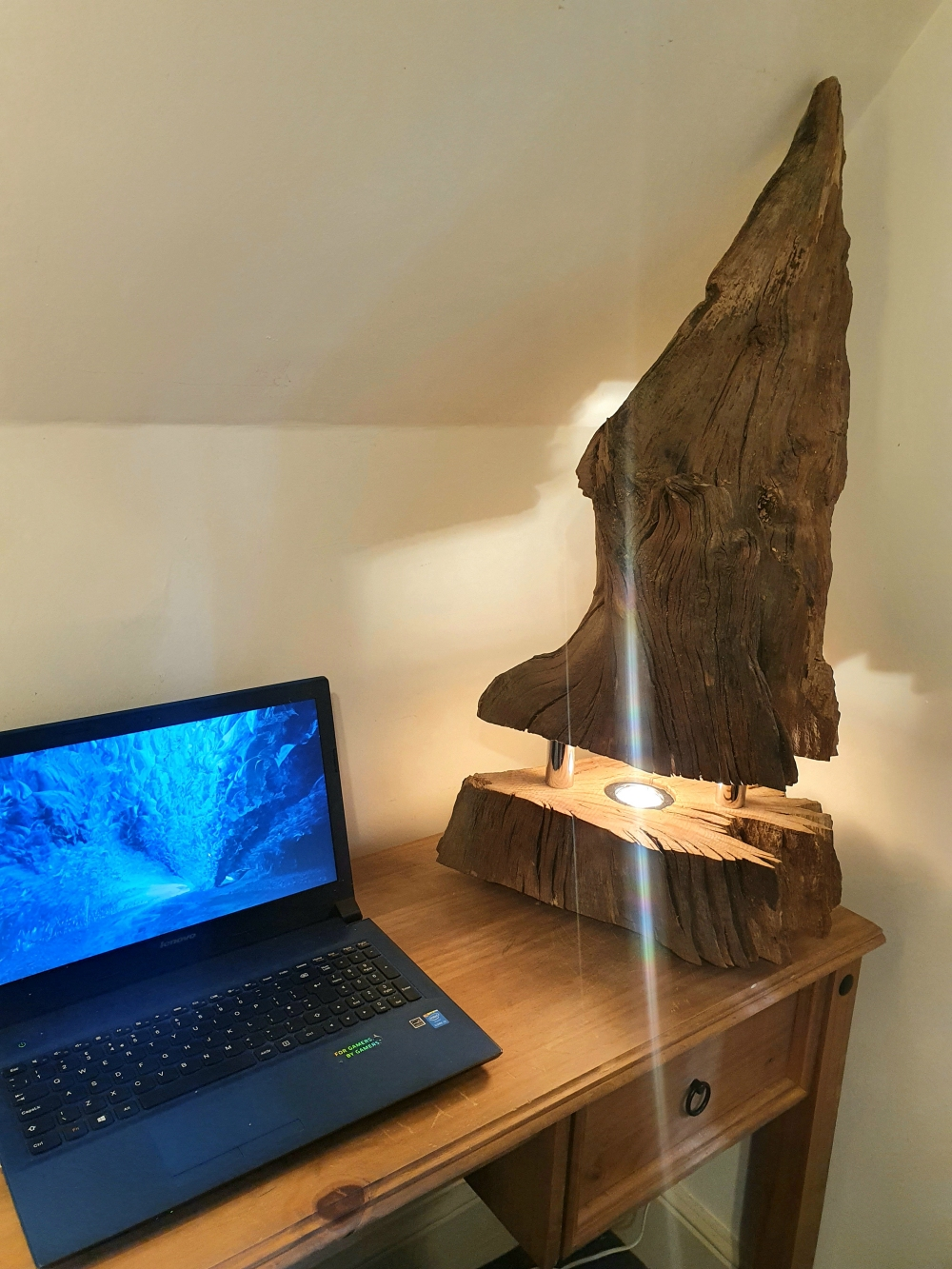 Original Oak Root Lamp
