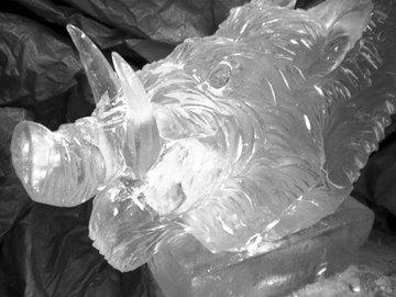 Boars Head Vodka Luge
