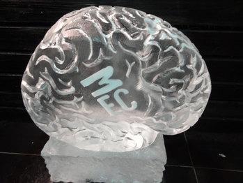 Brain Vodka Luge