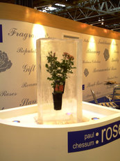 Paul Chessum Roses Ice Display at NEC