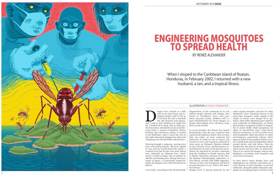 Mosquito Editorial, 2017