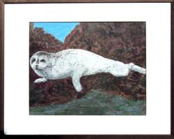 white seal deedees 073 copy.psd copy.psd.jpg
