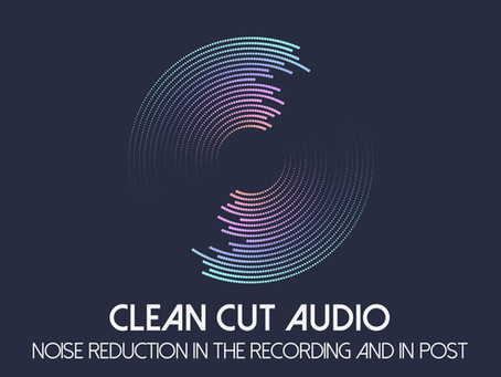 24. Noise Reduction in the Recording and in Post