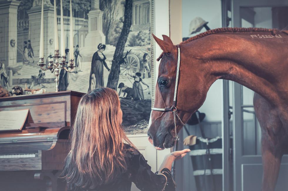Un cheval dans la maison