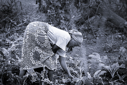 Tanzanie_Agriculture.jpg