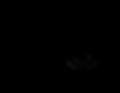 MUNI-MAP.png
