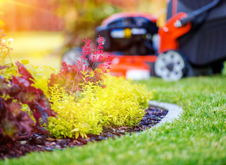 25% OFF Spring Cleanups