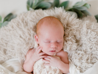 Newborn | Baby Felix | Studio Session Pittsburgh