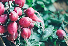 Radish at farmers market.jpg