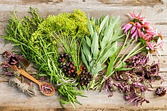 bunches of healing herbs and coneflowers