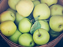 Fresh apples at the local farmers market
