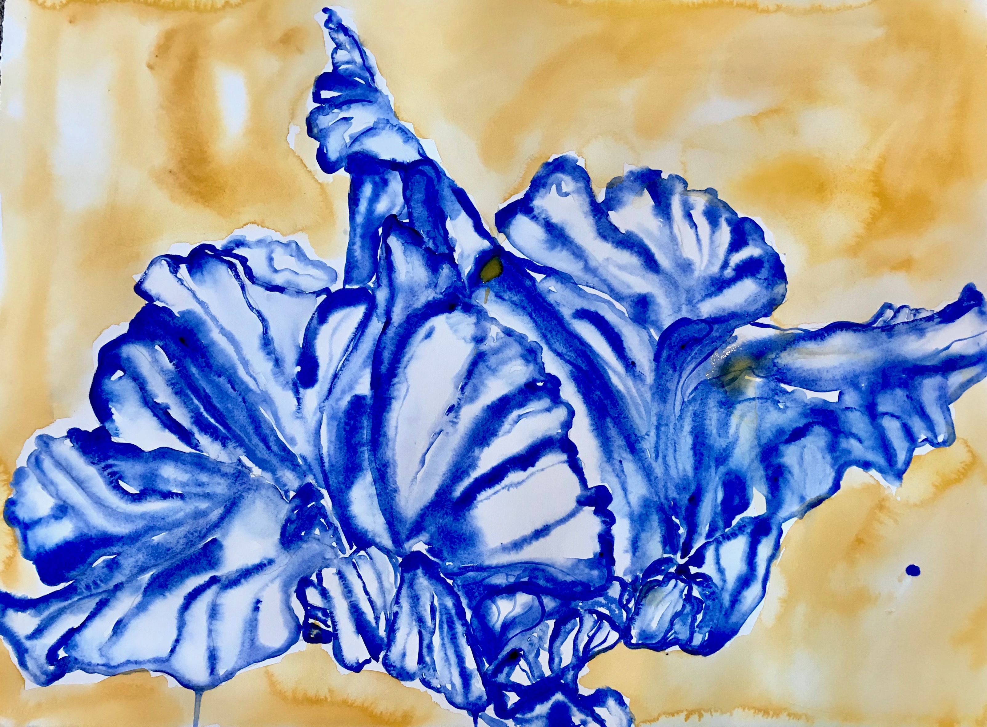 Naples Blue Iris I