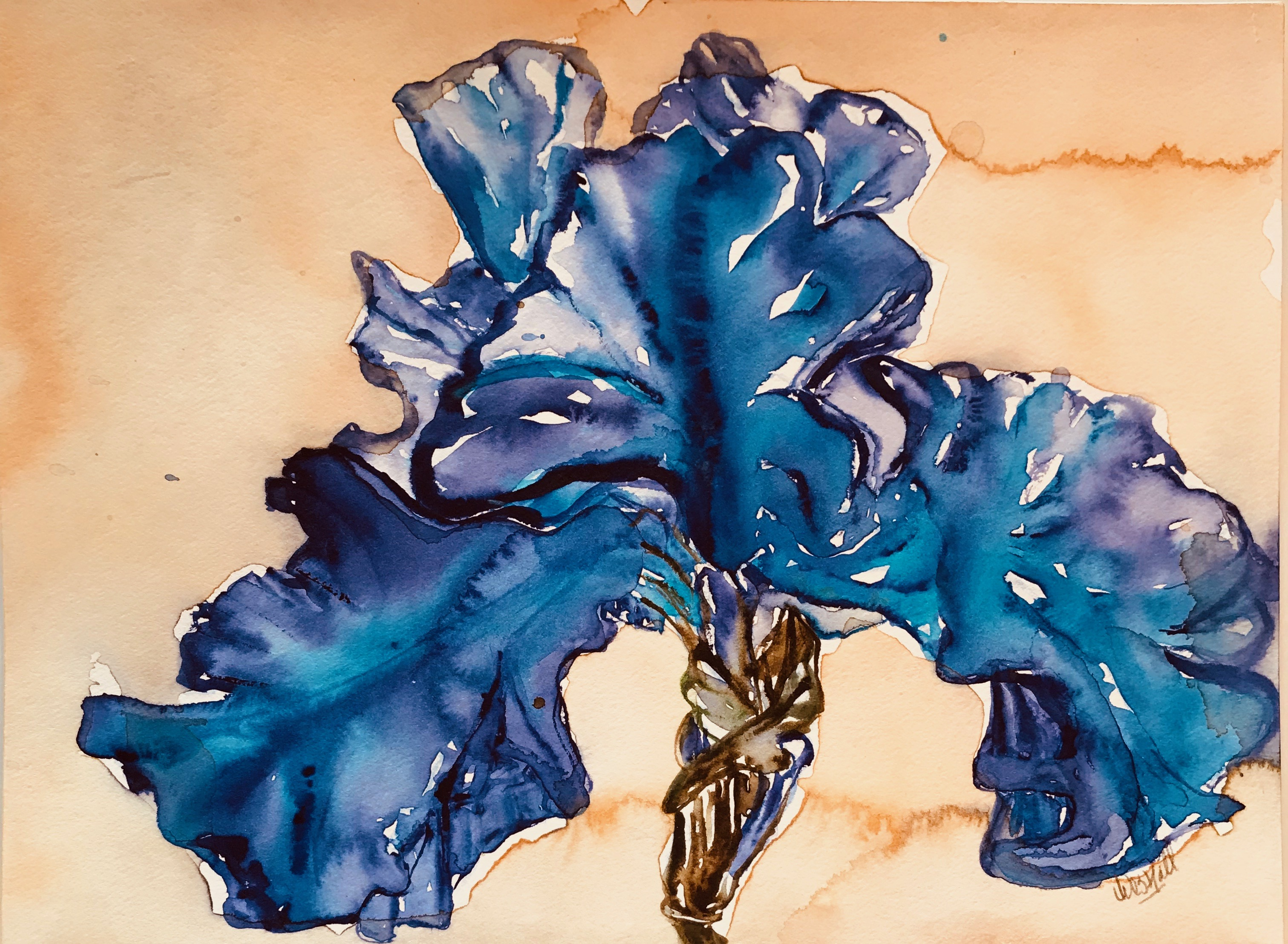 Naples Blue Iris II
