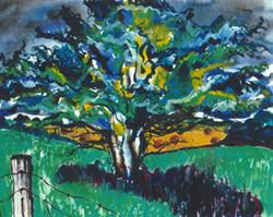Hawthorne Tree on 2nd Line East