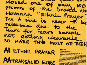 Havanna - Ethnic Prayer  Promo Sheet 1993