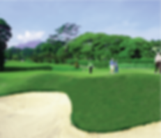 Hole 17.png