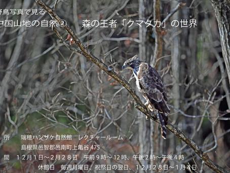 森の王者「クマタカの世界」展 2月28日まで開催中