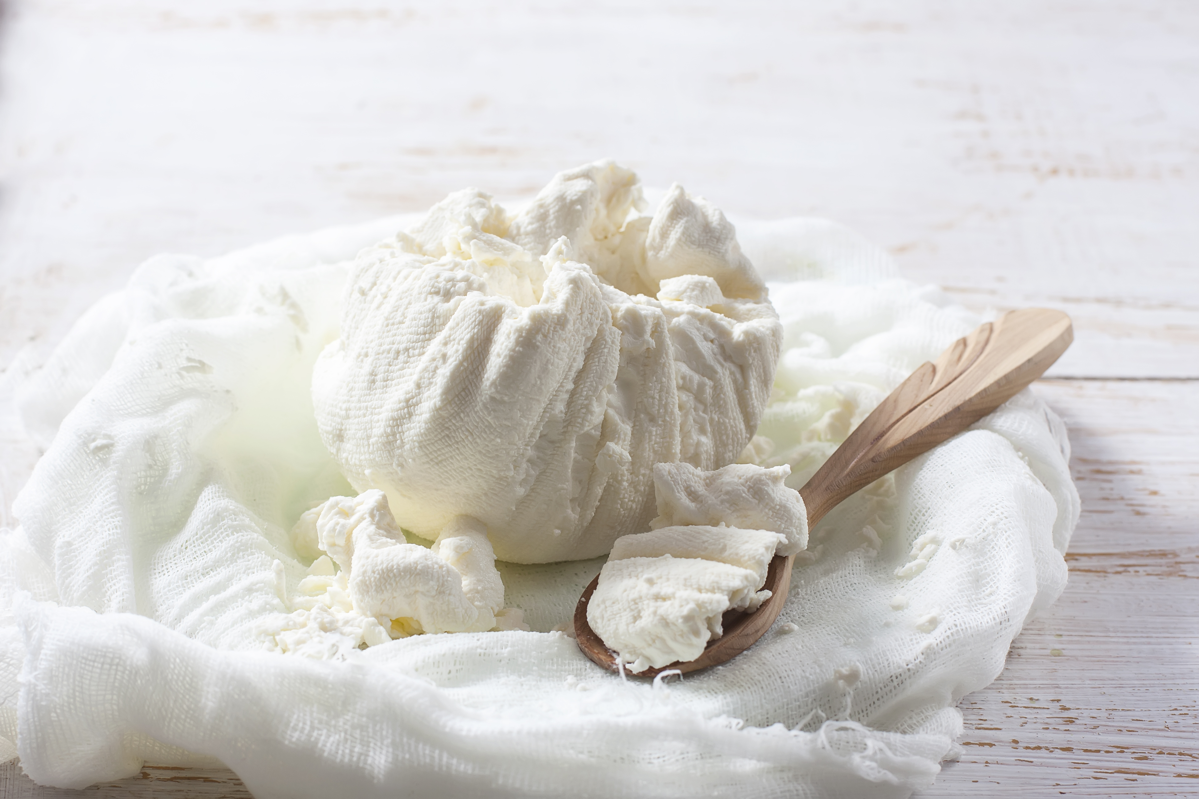 Fresh homemade cottage cheese in cheesec