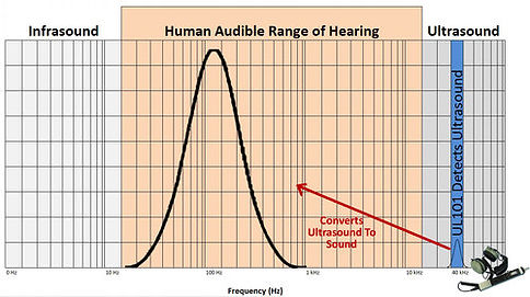 How UL101 Detects & Converts Ultrasound Into Human Audible Range of Hearing