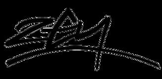 logo zen_black.png