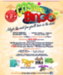 bingo,cosmic,5As,Alton Area Animal Aid Association,Alton VFW,5As fundraiser,May 30, 2015,Tribout,Alton,bingo,cosmic