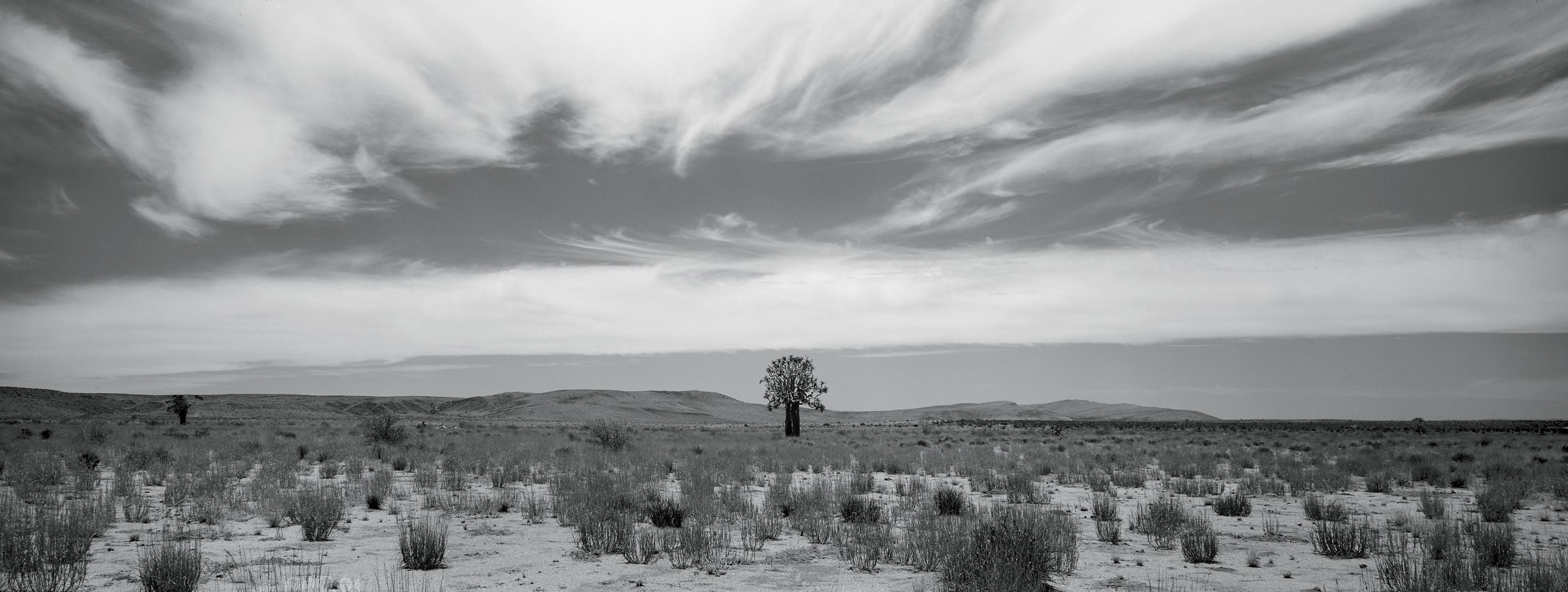 Southern Africa Portfolio-26.jpg