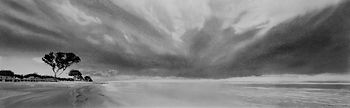 Bruce Mortimer Gallery Pencil Charcoal Drawing Photo Realistic Beach Black and White Tree Cloud Sea