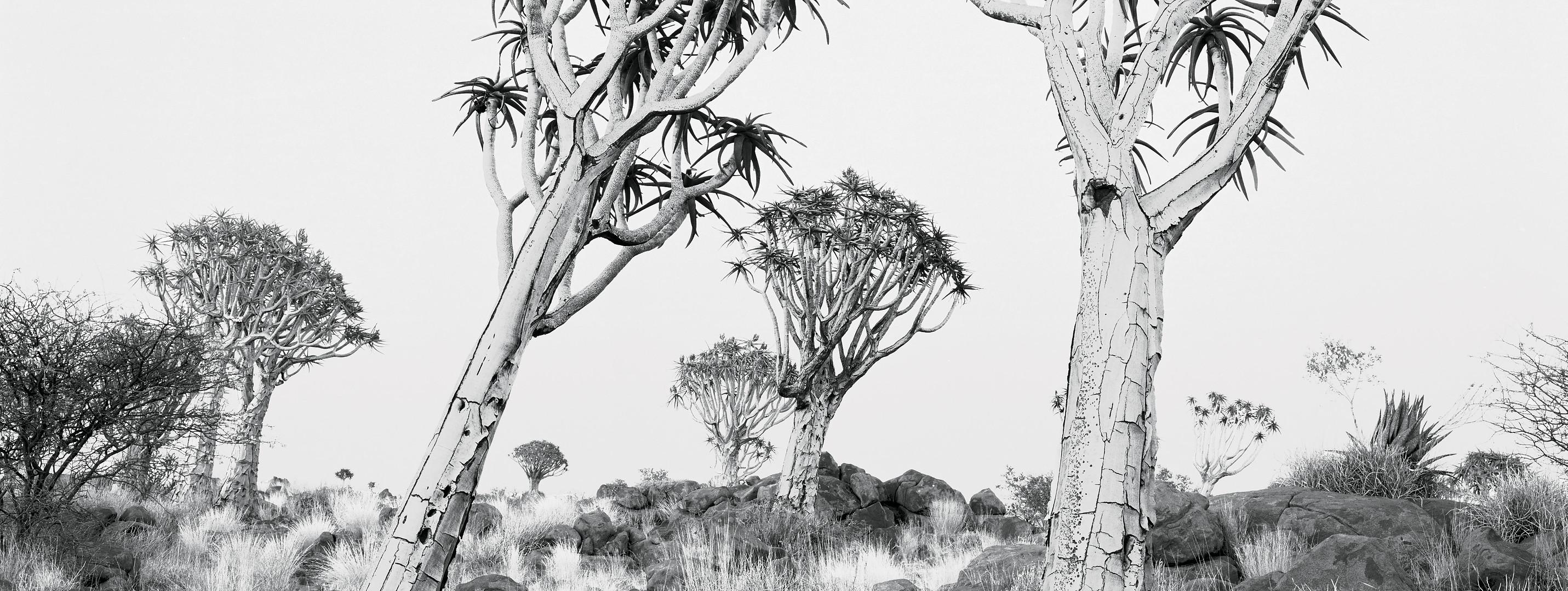 Southern Africa Portfolio-30.jpg