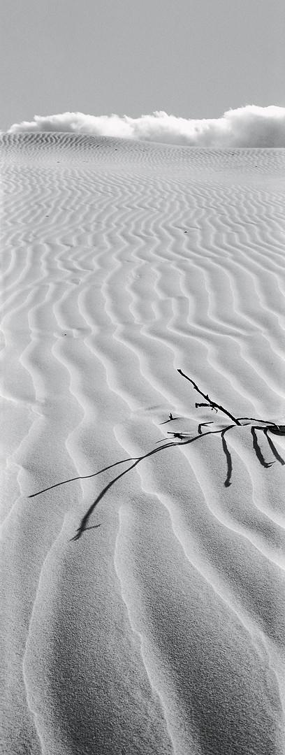Southern Africa Portfolio-23.jpg