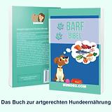 Werbebanner-BB-einfach-900x900-1.webp