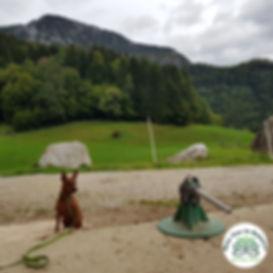 PicsArt_02-02-11.11.25.jpg